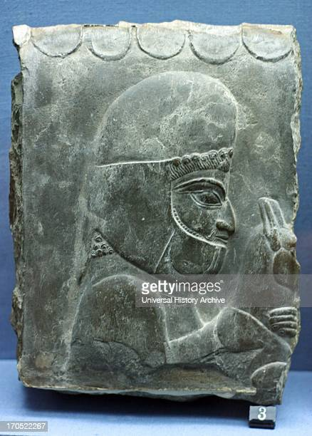 A Median servant depicted on a relief from Persepolis during the reign of Darius or Xerses 510465 BC