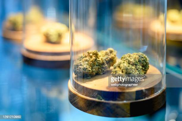 medical cannabis - medical cannabis stock pictures, royalty-free photos & images