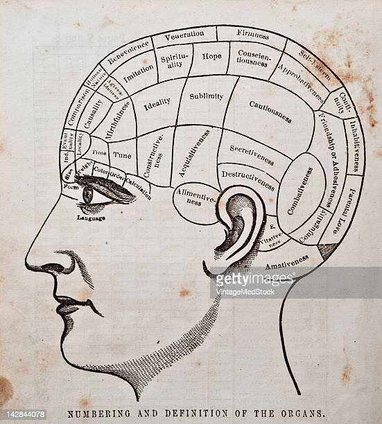 A medical engraving from 'Phrenological Journal and Life Illustrated' illustrates the phrenology chart 1865