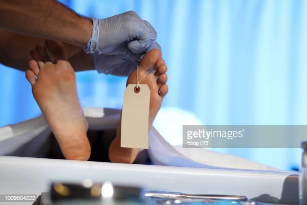 médico forense con el cadáver en la morgue. - autopsia fotografías e imágenes de stock