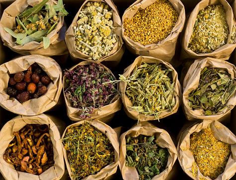 Medical Herbs 173586199
