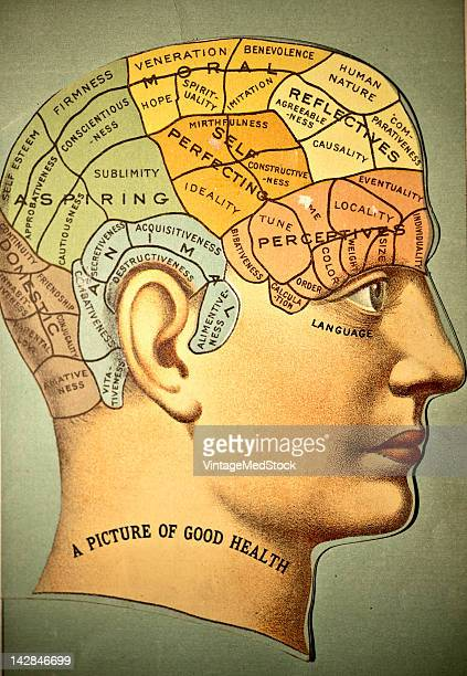 A medical illustration from 'A System of Human Anatomy Including its Medical and Surgical Relations' shows the phrenology chart 1883