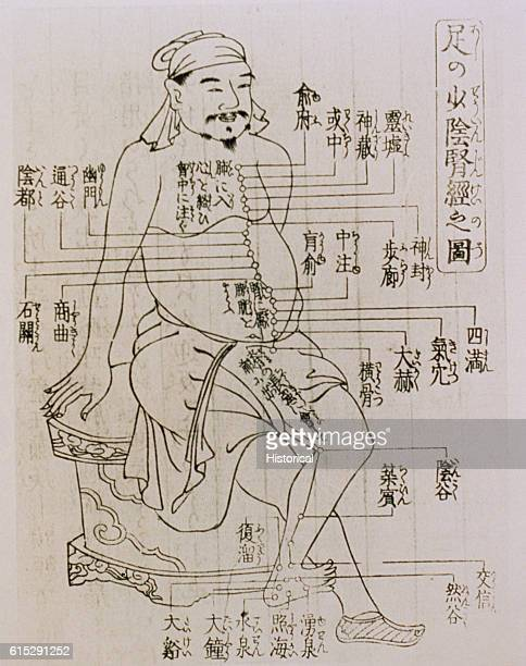 A medical illustration of a man depicts the acupuncture points on a human body