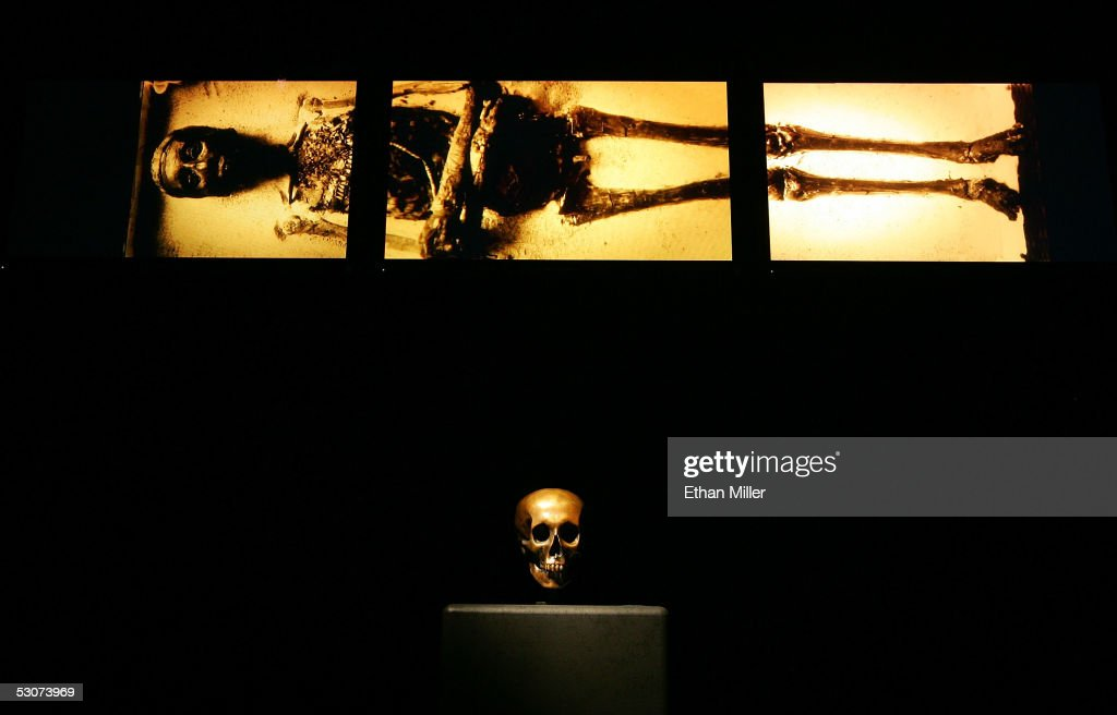 Medical imagery of Tutankhamun is shown above a replica of King Tut's skull while on display during the 'Tutankhamun And The Golden Age Of The Pharaohs' Exhibit Opening at the Los Angeles County Museum of Art (LACMA) on June 15, 2005 in Los Angeles, California.