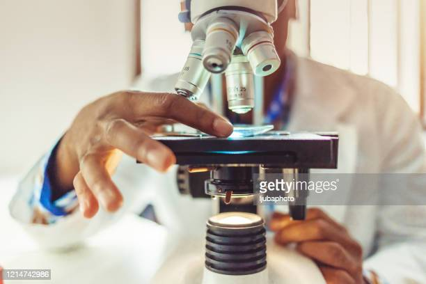medical laboratory, scientist hands using microscope for chemistry - microscope stock pictures, royalty-free photos & images