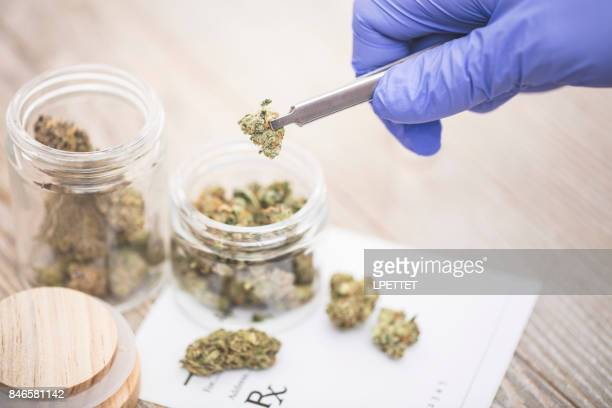 medical marijuana - marijuana stock photos and pictures