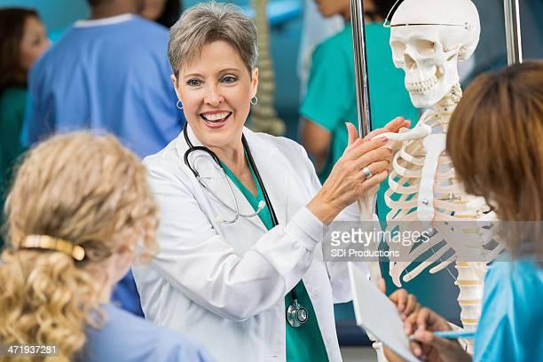 Médico o de enfermería profesor utilizando anatomía esqueleto modelo para enseñar