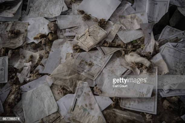 Medical records are scattered about in the ruins of AlSalam Hospital after the building was destroyed during fighting between Iraqi forces and...