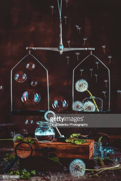 medical scales with dandelion seed and soap bubbles - khabarovsk stock pictures, royalty-free photos & images