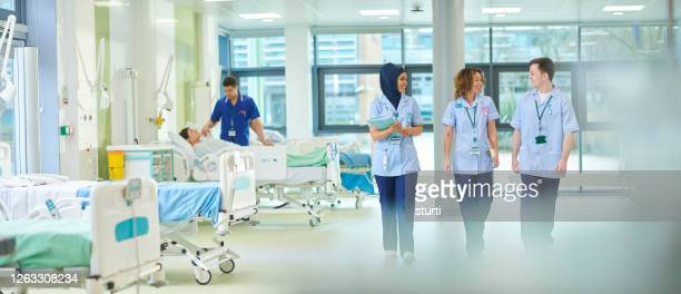 medical students on the ward - ward stock pictures, royalty-free photos & images
