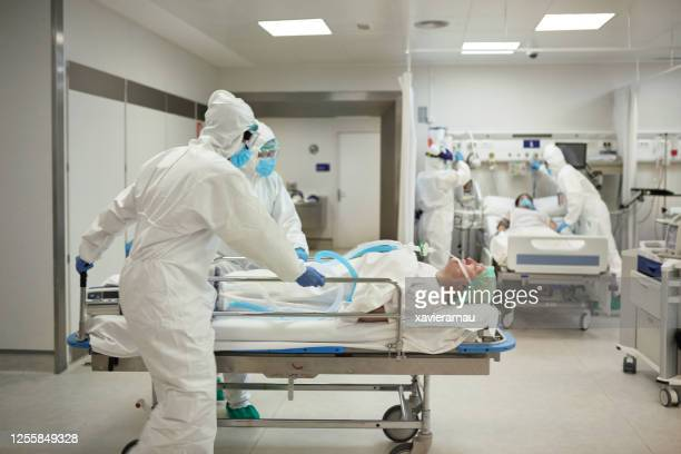 medical team wheeling covid-19 patient into hospital ward - patient on ventilator stock pictures, royalty-free photos & images