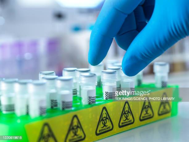 medical testing - mucus stock pictures, royalty-free photos & images