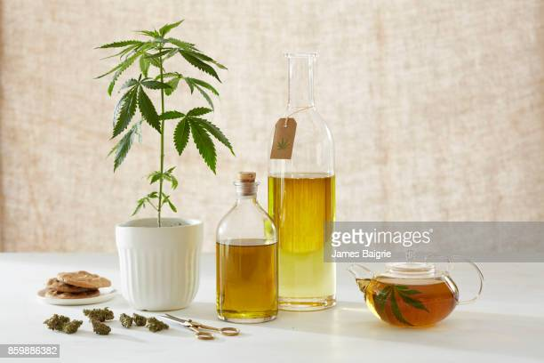 medicinal and healing properties of cannabis - cannabis oil stock photos and pictures