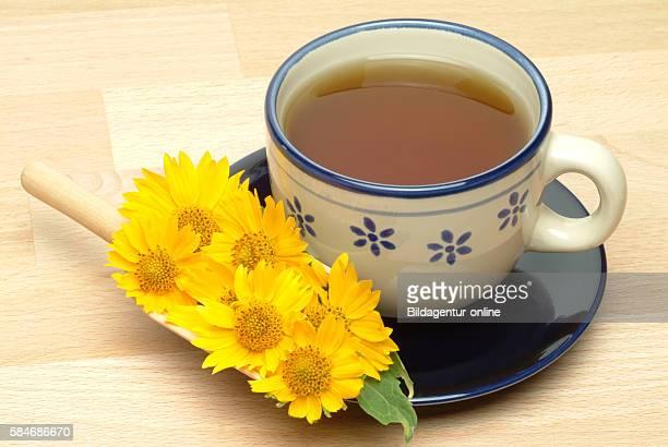 Medicinal tea made of Anil Anil de Muerte Verbesina fasciculata