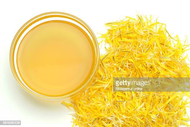 Medicinal tea made of common Dandelion Taraxacum officinale