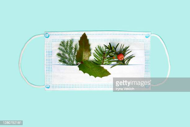 medicine face mask with splash of christmas tree branches. - coronavirus winter stock pictures, royalty-free photos & images