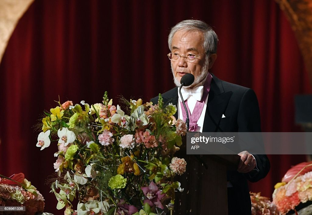 Medicine Nobel prize laureate of Japan Yoshinori Ohsumi delivers his Banquet Speech at the 2016 Nobel Prize banquet at the Stockholm City Hall on December 10, 2016. News Agency / HENRIK MONTGOMERY / Sweden OUT