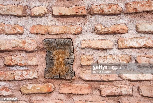 Medieval Brick Wall