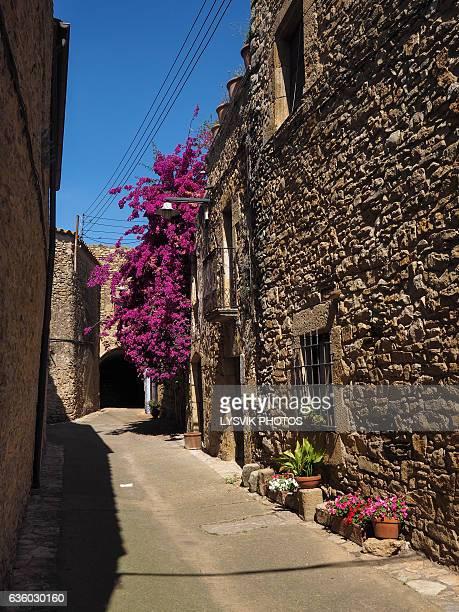 Medieval street Palau-Sator , Gerona