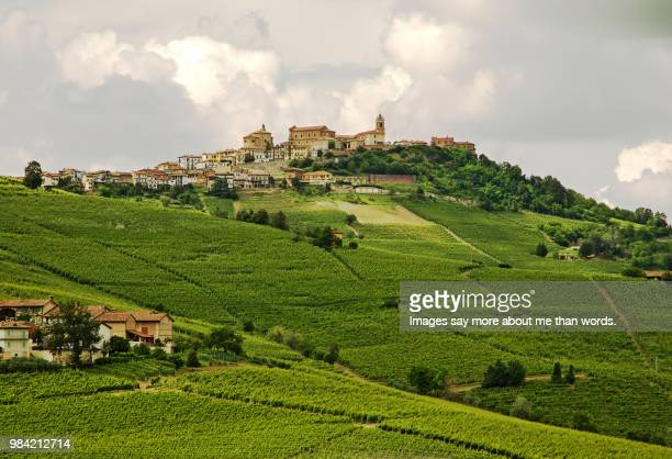 a medieval town set on top of a hill surrounded by vines on all sides. - piedmont italy stock pictures, royalty-free photos & images