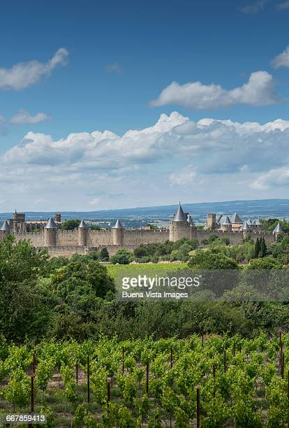 medieval town surrounded by vineyards - languedoc rousillon stock pictures, royalty-free photos & images