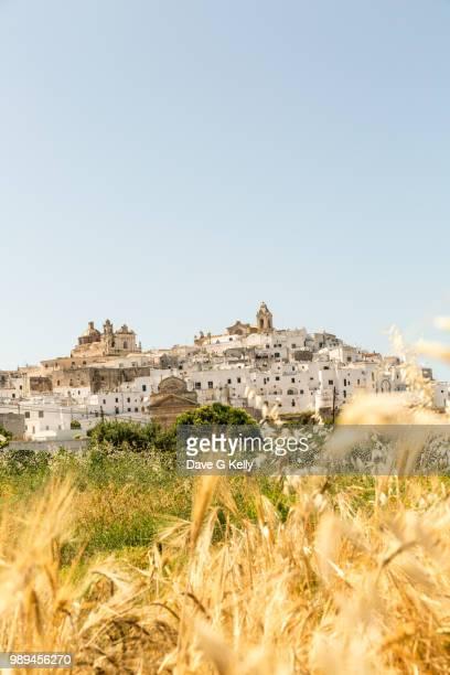 medieval whitewashed hilltop puglian town - apulië stockfoto's en -beelden