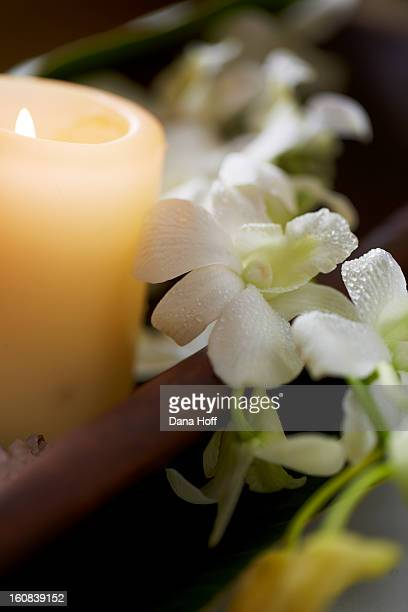 meditation candle in zen atmosphere and white orch - dana white stock pictures, royalty-free photos & images