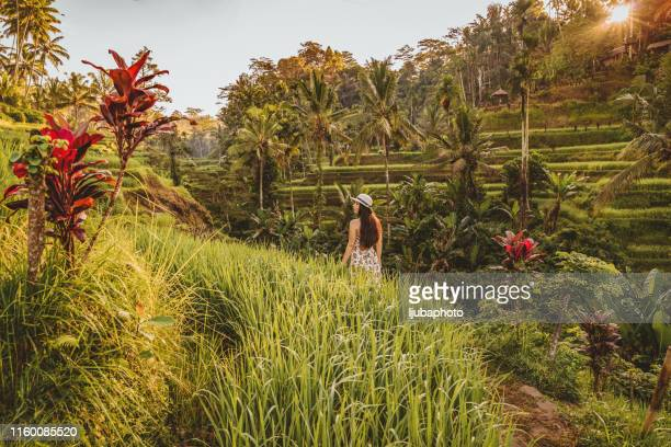 meditation with a view - tegallalang stock photos and pictures