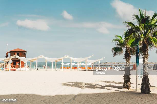 mediterranean beach at midday - tel aviv stock pictures, royalty-free photos & images