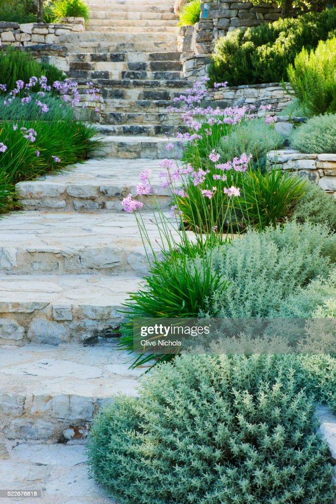 Mediterranean Garden Stock Photo | Getty Images