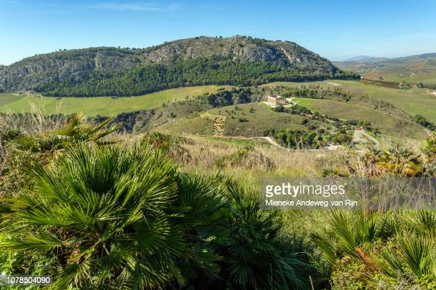 Mediterranean landscape with view of the Doric Temple of Segesta, Trapani province, Sicily, Italy