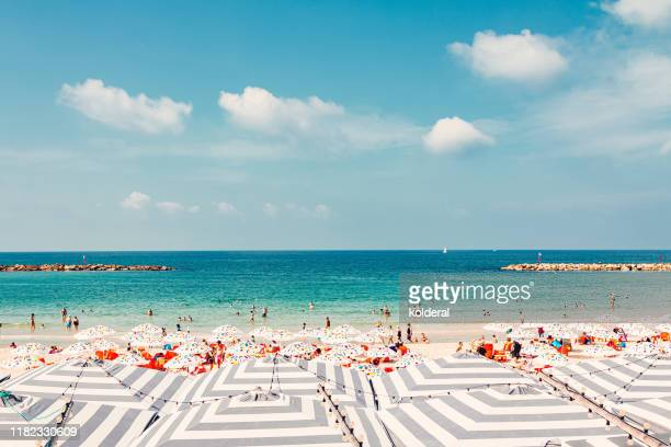 mediterranean sandy beach and beach umbrellas - tel aviv foto e immagini stock