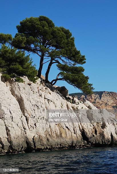 mediterranean sea shore - bernard grua photos et images de collection