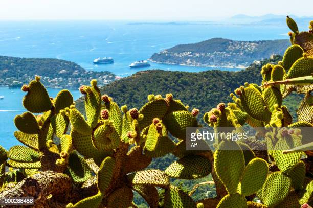 Mediterranean sea viewed from Jardin Exotique in the Medieval Village of Eze, French Riviera, France