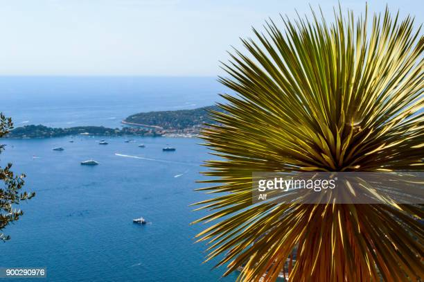 Mediterranean sea viewed from the Jardin Exotique in the Medieval Village of Eze, French Riviera, France