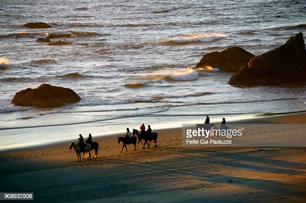 medium group of people doing horse riding at bandon beach - recreational horseback riding stock pictures, royalty-free photos & images