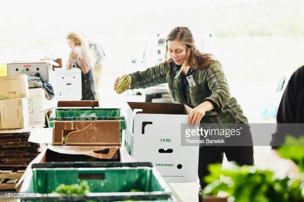 medium wide shot of female farmer filling csa box with fresh organic vegetables on farm - printed sleeve stock pictures, royalty-free photos & images