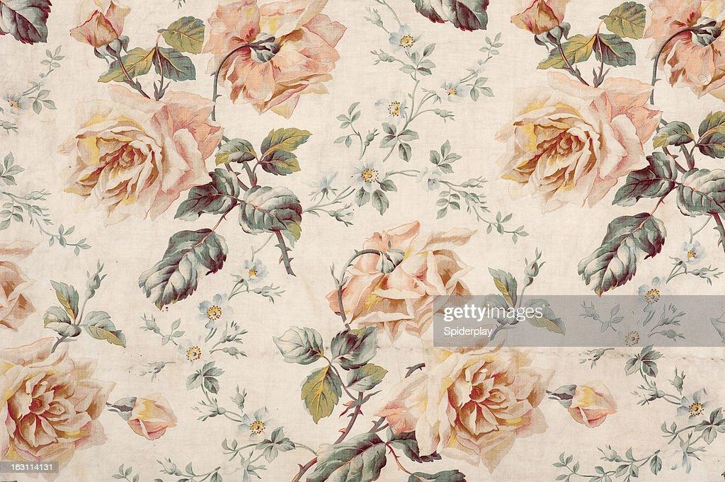 Medley Rose Close Up : Stock Photo