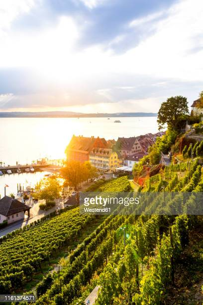 meersburg in backlight, lake constance, germany - bodensee stock pictures, royalty-free photos & images