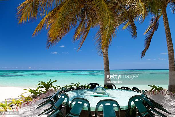 meeting room under a palm tree at the Caribbean beach