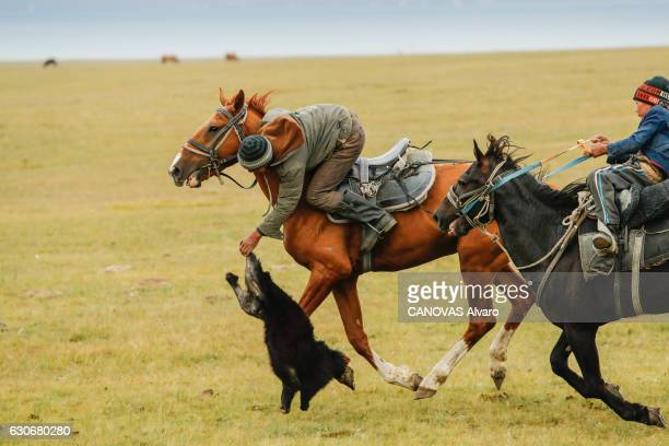 Meeting with the Kyrgyz a people of nomads and riders from Central Asia A part of oulak tartysh a Kirghiz equestrian sport in which a decapitated...