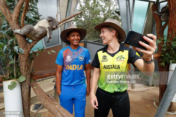 Meg Lanning of Australia and Harmanpreet Kaur of India take a 'selfie' with a Koala during the ICC 2020 Women's Twenty20 World Cup Captains media...