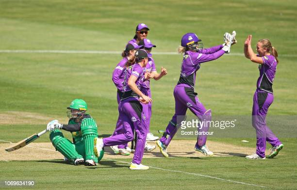 Meg Phillips of the Hurricanes is congratulated by her teammates after dismissing Lizelle Lee of the Stars during the Women's Big Bash League match...