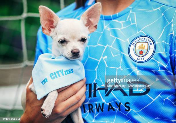 Megan Campbell of Manchester City poses with her dogs for International Dog Day on August 26, 2020 in Manchester, England.