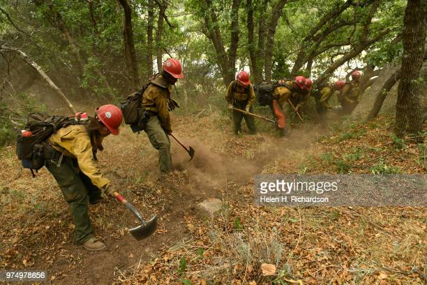Megan Emerson left and other members of the Montana Bitterroot Hotshots use hand tools to put in a shaded fuel break and cut a hand line around a...