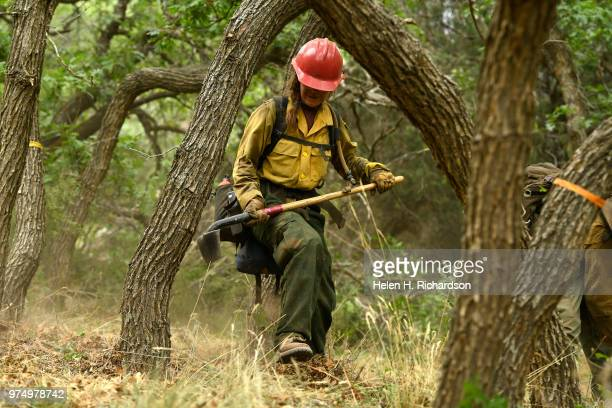 Megan Emerson right a member of the Montana Bitterroot Hotshots uses a hand tools to put in a shaded fuel break and cut a hand line around a home...
