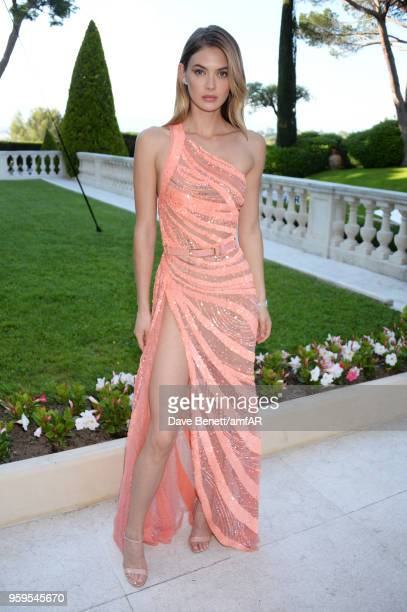 Megan Williams arrives at the amfAR Gala Cannes 2018 at Hotel du Cap-Eden-Roc on May 17, 2018 in Cap d'Antibes, France.