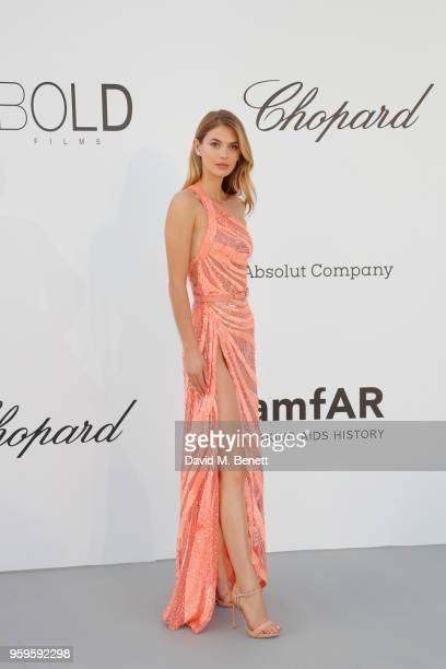 Megan Williams arrives at the amfAR Gala Cannes 2018 at Hotel du CapEdenRoc on May 17 2018 in Cap d'Antibes France