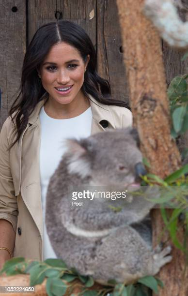 Meghan Duchess of Sussex meets a Koala called Ruby during a visit to Taronga Zoo on October 16 2018 in Sydney Australia The Duke and Duchess of...