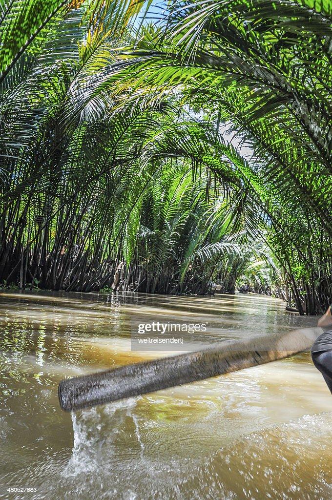 Mekong Delta, An Giang, Vietnam : Bildbanksbilder